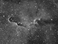 IC1396 in Ha